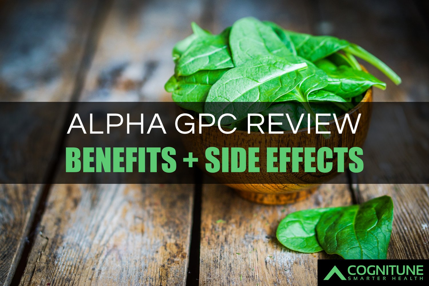 Alpha gpc effects