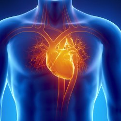 Omega-3 Fish Oil for Heart Health