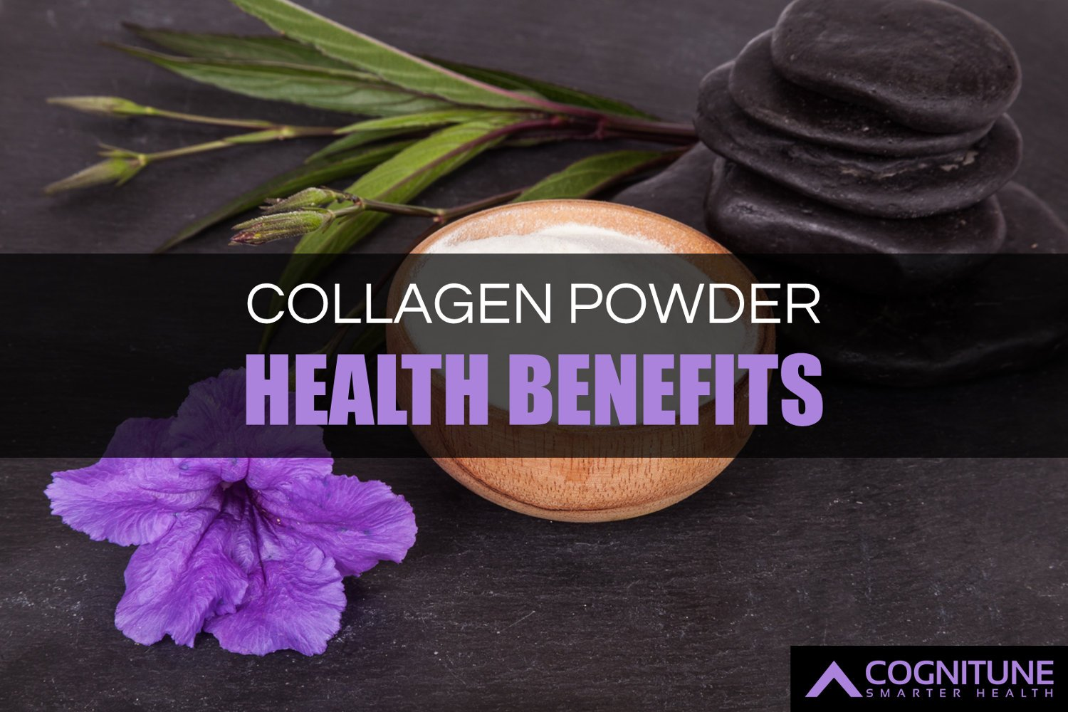 Hydrolyzed Collagen Benefits