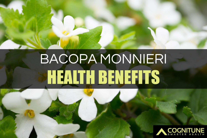 Bacopa Monnieri Health Benefits