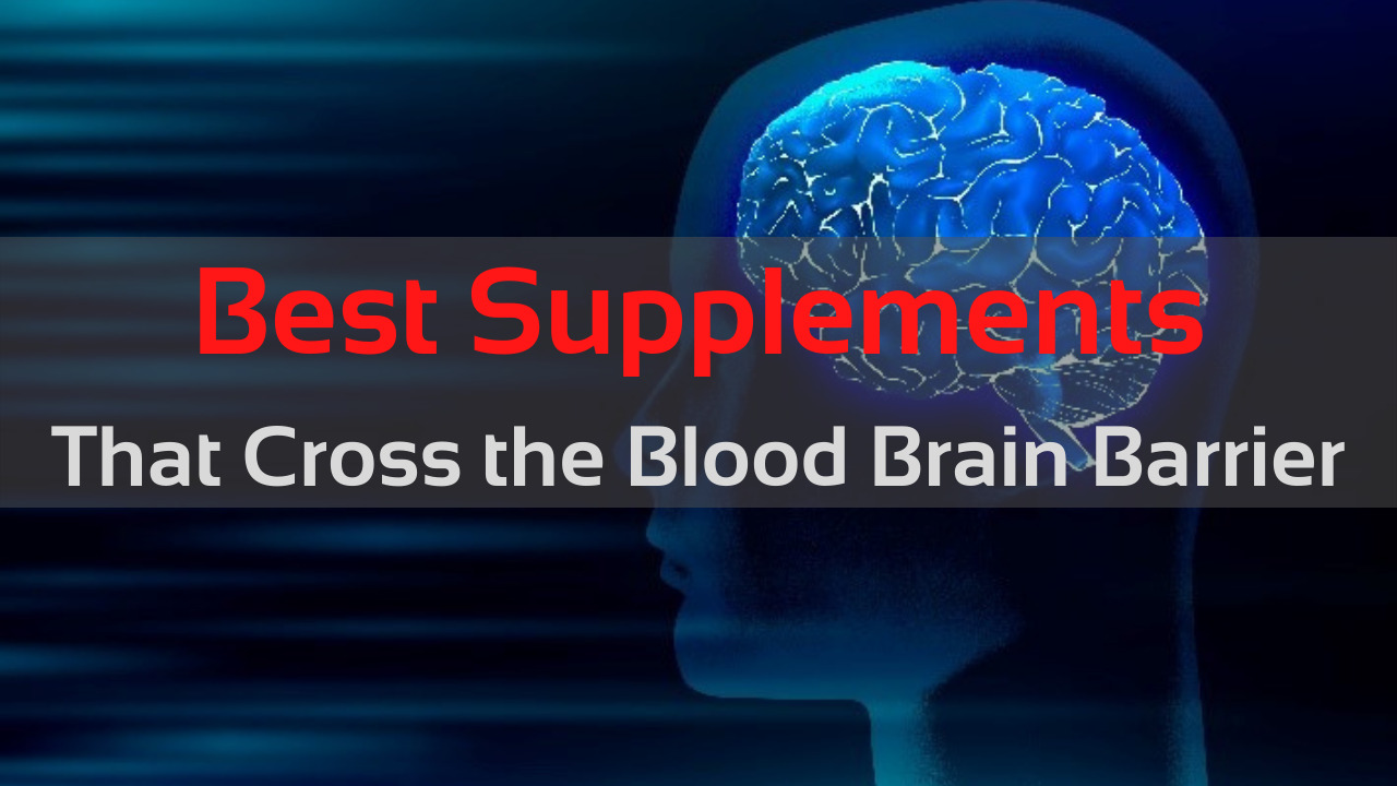 Best Supplements that Cross the Blood Brain Barrier