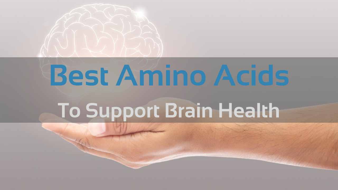 Best Amino Acids for your Brain